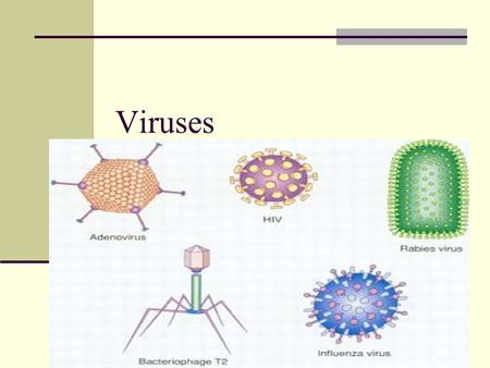 Viruses. Nonliving particle – do not contain all characteristics of life Reproduce by infecting cells Made of 2 things Nucleic acid Capsid – protein coat.