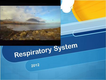 Respiratory System 2012. Breathing Is the movement of air into and out of the lungs Allows your respiratory system to take in oxygen and eliminate carbon.
