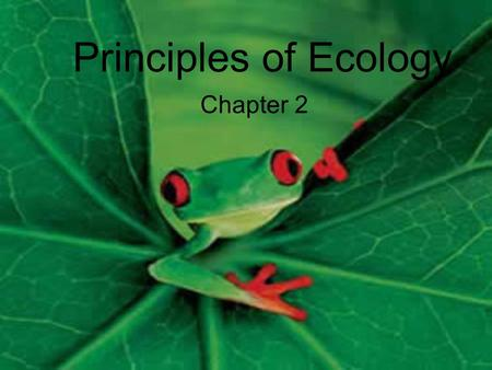 Principles of Ecology Chapter 2. Ecology The study of interactions among organisms and between organisms and their environment.