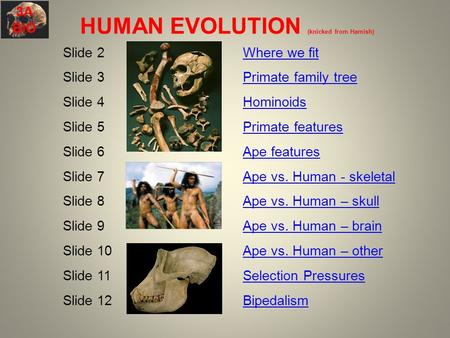 Human evolution interactive powerpoint presentation.