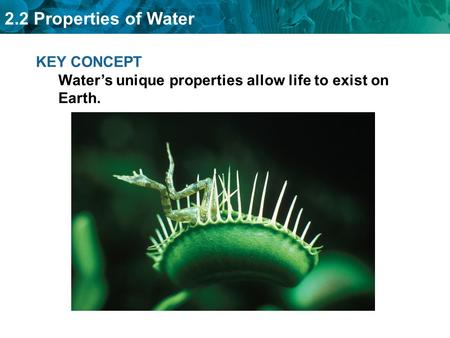 2.2 Properties of Water KEY CONCEPT Water's unique properties allow life to exist on Earth.