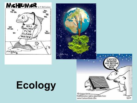 Ecology. Chapter 13: Principles of Ecology Ecology is the study of the interactions among living things, and between living things and their surroundings.