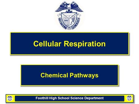 Foothill High School Science Department Cellular Respiration Chemical Pathways.