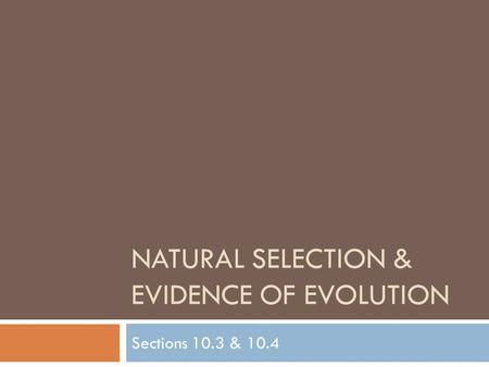 NATURAL SELECTION & EVIDENCE OF EVOLUTION Sections 10.3 & 10.4.
