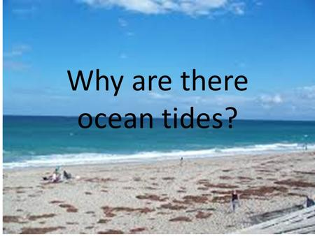 Why are there ocean tides?. Every 6 hours there is either a low tide or a high tide. 2 of each per day.