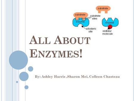 A LL A BOUT E NZYMES ! By: Ashley Harris,Sharon Mei, Colleen Chasteau.