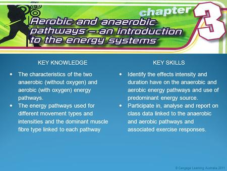 KEY KNOWLEDGEKEY SKILLS  The characteristics of the two anaerobic (without oxygen) and <strong>aerobic</strong> (with oxygen) energy pathways.  The energy pathways used.