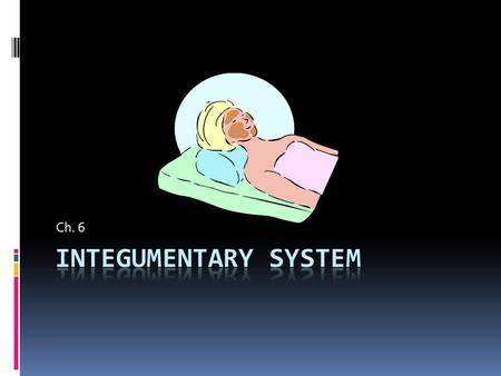 Ch 6 – Integumentary System - ppt download