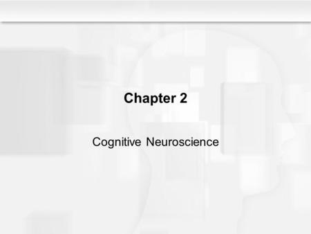 Chapter 2 Cognitive Neuroscience. Some Questions to Consider What is cognitive neuroscience, and why is it necessary? How is information transmitted from.