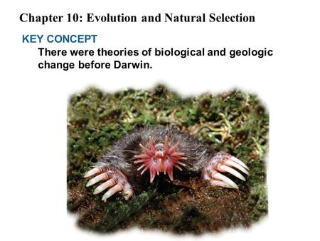 KEY CONCEPT There were theories of biological and geologic change before Darwin. Chapter 10: Evolution and Natural Selection.