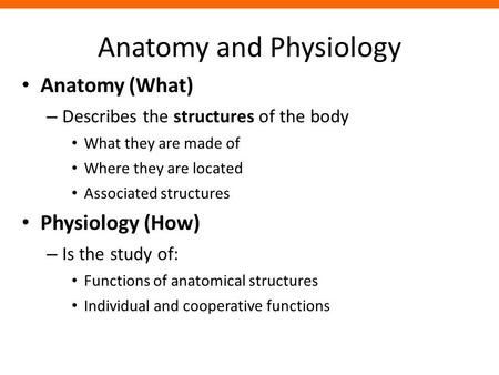 <strong>Anatomy</strong> <strong>and</strong> <strong>Physiology</strong> <strong>Anatomy</strong> (What) – Describes the structures of the body What they are made of Where they are located Associated structures <strong>Physiology</strong>.