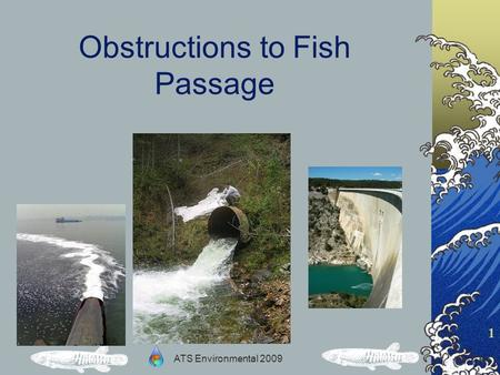 ATS Environmental 2009 1 Obstructions to Fish Passage.