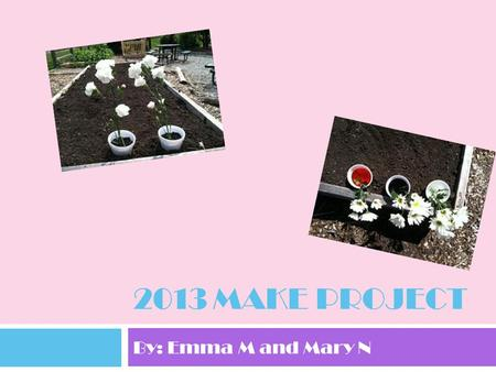 2013 Make Project By: Emma M and Mary N.