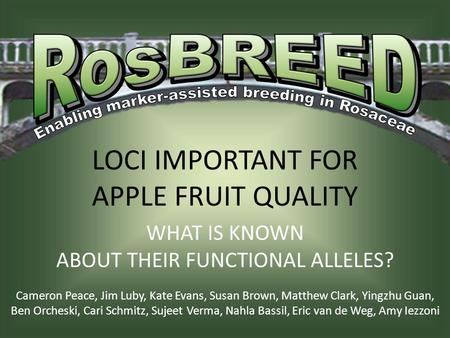 LOCI IMPORTANT FOR APPLE FRUIT QUALITY