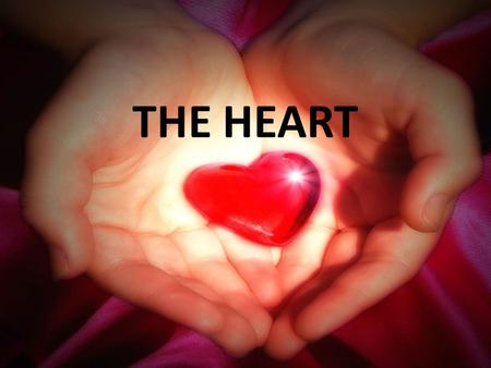 THE HEART.