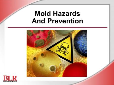 Mold Hazards And Prevention. © Business & Legal Reports, Inc. 0809 Session Objectives Understand the potential health hazards of exposure to mold Detect.