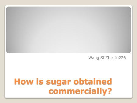 How is sugar obtained commercially? Wang Si Zhe 1o226.