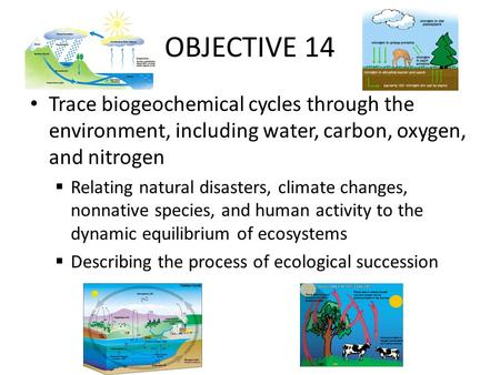 OBJECTIVE 14 Trace biogeochemical cycles through the environment, including water, carbon, oxygen, and nitrogen Relating natural disasters, climate changes,