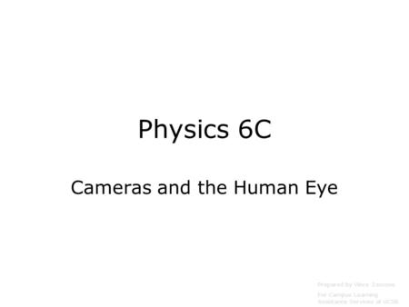 Cameras and the Human Eye