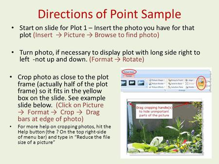 Directions of Point Sample Start on slide for Plot 1 – Insert the photo you have for that plot (Insert Picture Browse to find photo) Turn photo, if necessary.