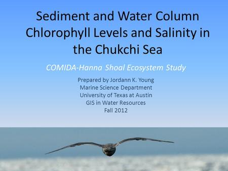 Sediment and Water Column Chlorophyll Levels and Salinity in the Chukchi Sea COMIDA-Hanna Shoal Ecosystem Study Prepared by Jordann K. Young Marine Science.