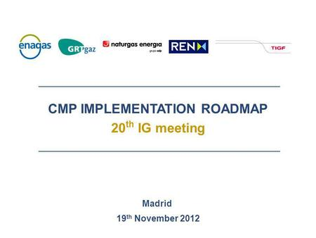 CMP IMPLEMENTATION ROADMAP 20 th IG meeting Madrid 19 th November 2012.