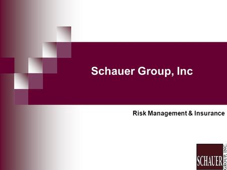 Schauer Group, Inc Risk Management & Insurance. Presenters Joseph D. Schauer, CPCU, ARM Practice Leader Risk Management Ron Van Horn, CPCU Practice Leader.