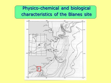 Physico-chemical and biological characteristics of the Blanes site.
