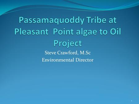 Steve Crawford, M.Sc Environmental Director 1. Overview and Background Tribal energy mission statement: To be 100% self- sufficient in energy, while safeguarding.