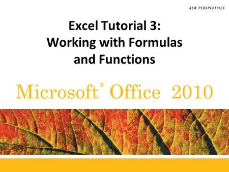 ® Microsoft Office 2010 Excel Tutorial 3: Working with Formulas and Functions.