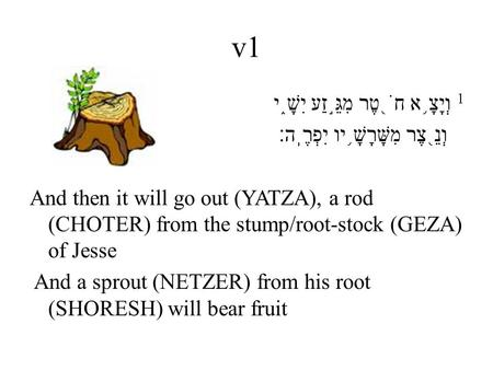 V1 1 וְיָצָ ֥ א חֹ ֖ טֶר מִגֵּ ֣ זַע יִשָׁ ֑ י וְנֵ ֖ צֶר מִשָּׁרָשָׁ ֥ יו יִפְרֶֽה׃ And then it will go out (YATZA), a rod (CHOTER) from the stump/root-stock.