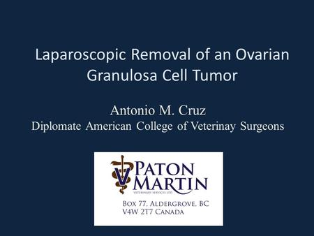 Laparoscopic Removal of an Ovarian Granulosa Cell Tumor