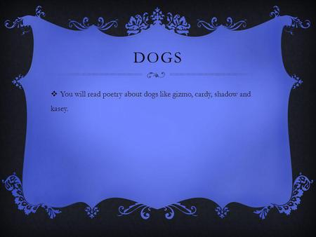 DOGS You will read poetry about dogs like gizmo, cardy, shadow and kasey.