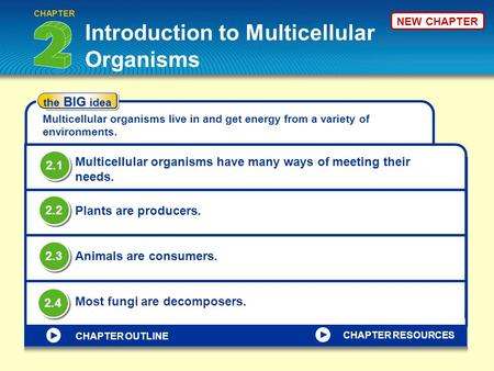 Introduction to Multicellular Organisms CHAPTER the BIG idea Multicellular organisms live in <strong>and</strong> get energy from a variety of environments. Multicellular.