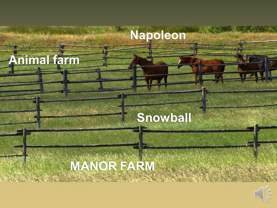 Napoleon Manor Farm Animal Farm Snowball Characters Ppt Download