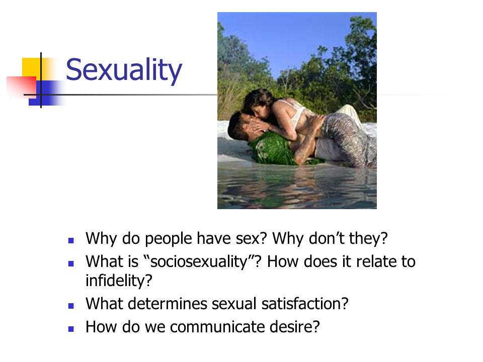 Sex why to have Why Do