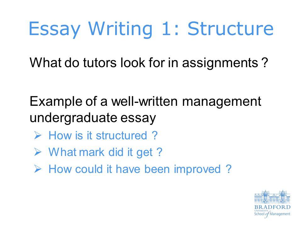 Undergraduate essay writing examples of good argumentative essays