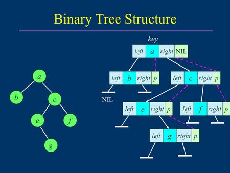 Binary Tree Structure a b fe c a rightleft g g NIL c ef b left right pp p pp left key.