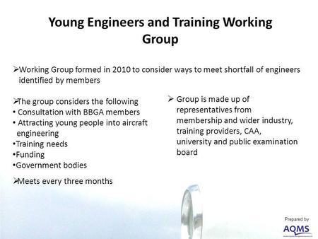 Young Engineers and Training Working Group Working Group formed in 2010 to consider ways to meet shortfall of engineers identified by members The group.