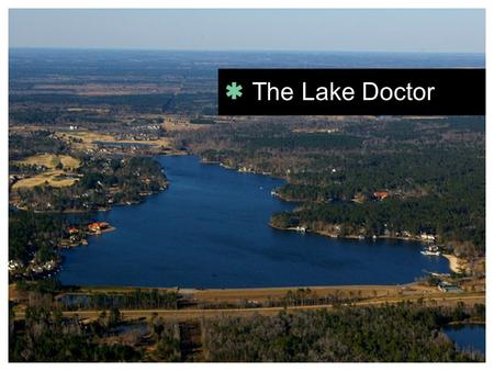 The Lake Doctor. Full-time practicing oral surgeon for 39 years.