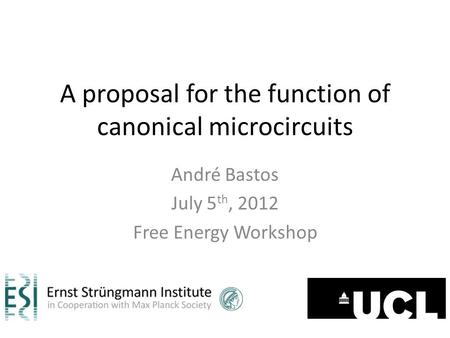 A proposal for the function of canonical microcircuits André Bastos July 5 th, 2012 Free Energy Workshop.