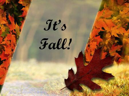 Its Fall!. How do we love the Fall? –the break from summer's heat and humidity –the brilliant reds, gold's, and oranges of fall leaves –the taste of hot.
