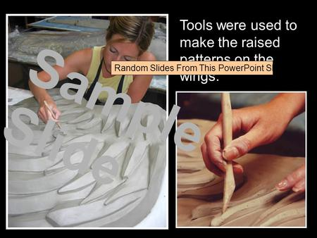 Tools were used to make the raised patterns on the wings. Sample Slide Random Slides From This PowerPoint Show.