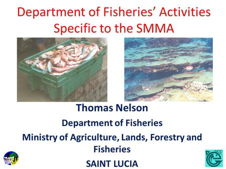 Department of Fisheries Activities Specific to the SMMA Thomas Nelson Department of Fisheries Ministry of Agriculture, Lands, Forestry and Fisheries SAINT.