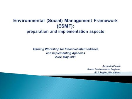 Training Workshop for Financial Intermediaries and Implementing Agencies Kiev, May 2011 Ruxandra Floroiu Senior Environmental Engineer, ECA Region, World.