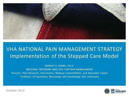 ROBERT D. KERNS, PH.D. NATIONAL PROGRAM DIRECTOR FOR PAIN MANAGEMENT