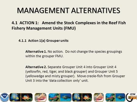 MANAGEMENT ALTERNATIVES 4.1 ACTION 1: Amend the Stock Complexes in the Reef Fish Fishery Management Units (FMU) 4.1.1 Action 1(a) Grouper units Alternative.