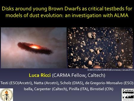 Disks around young Brown Dwarfs as critical testbeds for models of dust evolution: an investigation with ALMA Luca Ricci (CARMA Fellow, Caltech) Testi.