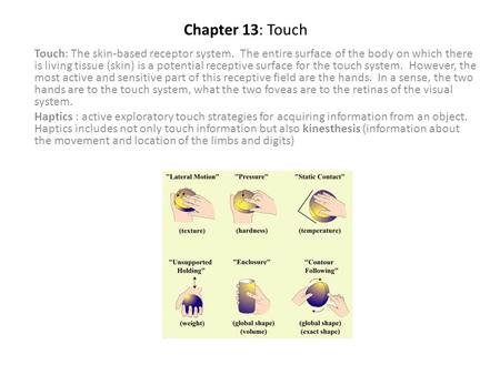 Chapter 13: Touch Touch: The skin-based receptor system. The entire surface of the body on which there is living tissue (skin) is a potential receptive.