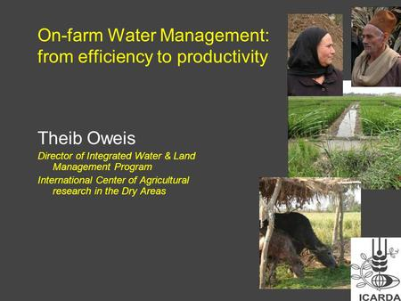 On-farm Water Management: from efficiency to productivity Theib Oweis Director of Integrated Water & Land Management Program International Center of Agricultural.